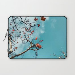 Tree branch with orange autumn leaves and blue sky background Laptop Sleeve