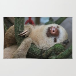 Sleeping baby sloth Rug