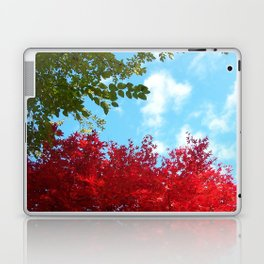 Japanese Maple in Fall with Blue Sky Laptop & iPad Skin