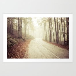 Wood in winter with fog Art Print