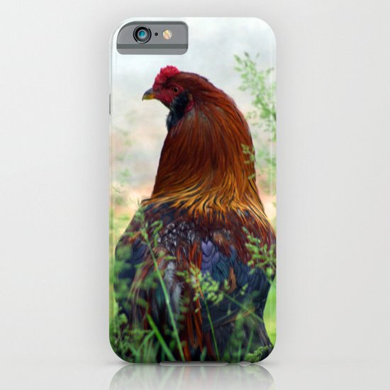The Hen - Glance Back 730 iPhone & iPod Case
