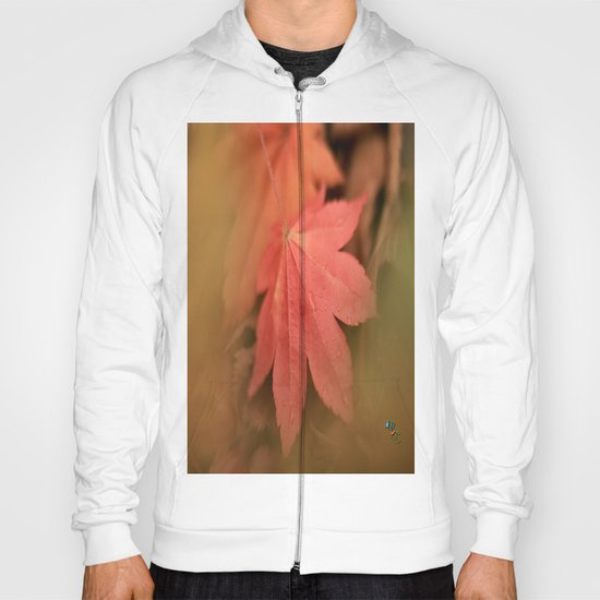 A Diffused Maple Hoody