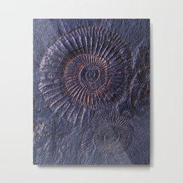 Ancient fossils Metal Print