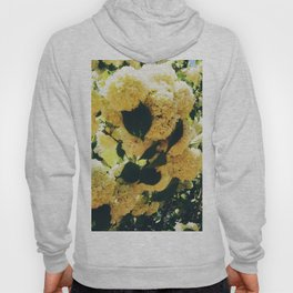 Yellow Snowballs Hoody