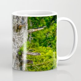 Tree Trunk with short thick Branch Stumps Coffee Mug