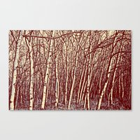 birch Canvas Prints featuring Birch by Indigo Rayz