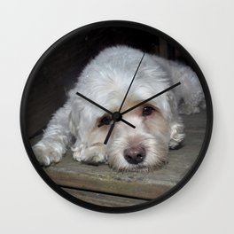 Dog resting on porch Wall Clock