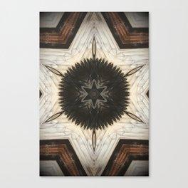 Quartz and Feather Canvas Print