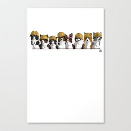 Band Of Borders - Desert (White) Canvas Print