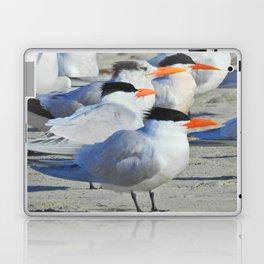 Elegant Terns Laptop & iPad Skin