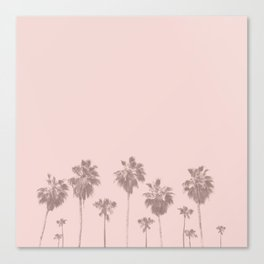Trees Palm in Pink Canvas Print