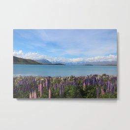 Lake Tekapo - Flower Field Metal Print