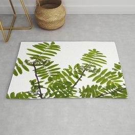 Green Rowan Leaves White Background #decor #society6 #buyart Rug