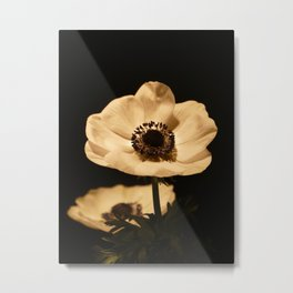 Anemone Flowers In Bloom Metal Print