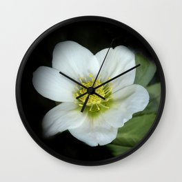 christmasrose on black -2- Wall Clock