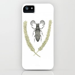 Feather Horned Beetle of Australia iPhone Case