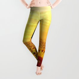 Fields of Gold Sunflowers at first morning light landscape painting Leggings