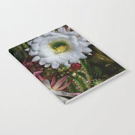 White Argentine_Giant_Cacti in Bloom Notebook