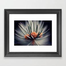 Macro Pine Needles Framed Art Print