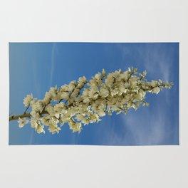 Soap Yucca Blossoms Rug