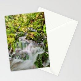 Rainforest Creek Stationery Cards