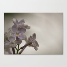 Lilac Morning Canvas Print
