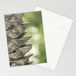 pinecone. Stationery Cards