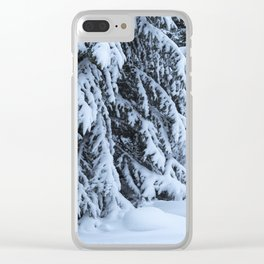 Beauty of Winter Clear iPhone Case