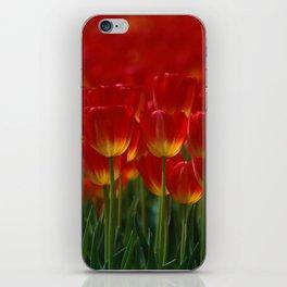 red tulip kingdom iPhone Skin