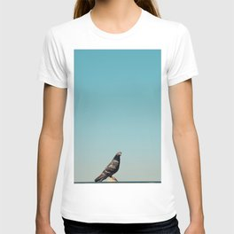 The pigeon is curious T-shirt