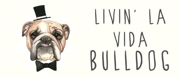 English Bulldog - livin' la vida bulldog Coffee Mug