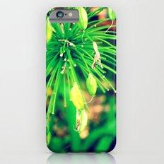 PurpleFlowers iPhone 6 Slim Case