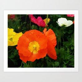Poppies One Art Print