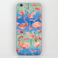 flamingos iPhone & iPod Skins featuring Flamingos  by Ninola