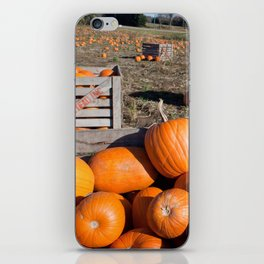 Crate of Pumpkins iPhone Skin