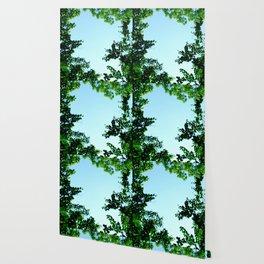 green border Wallpaper