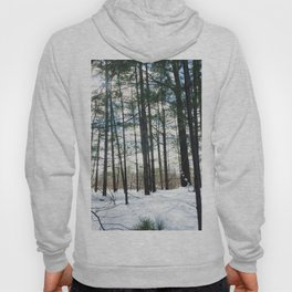 Winter Woods1 Hoody