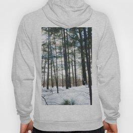 Winter Woods1 Hoody
