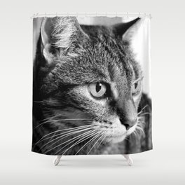 cat look Shower Curtain