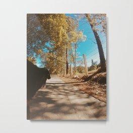 On The Road - Dog 1 Metal Print