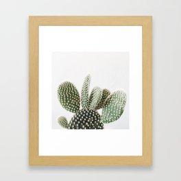 Good Morning Cactus Framed Art Print