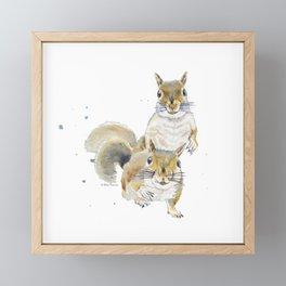 Two Squirrels Framed Mini Art Print