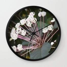 Longwood Gardens Orchid Extravaganza 12 Wall Clock