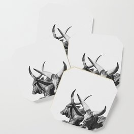 Animal Photography | Ankole-Watusi | Cattle | Bull | Steer | Black and White Coaster