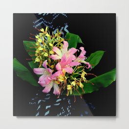 Naked Ladies, Gingerly Metal Print