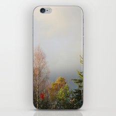 Storm Warning iPhone & iPod Skin