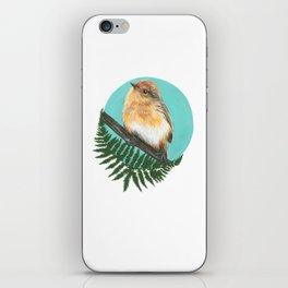 Eastern Robin iPhone Skin