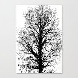 Black tree in wintertime. Canvas Print