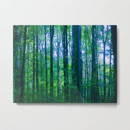 Afternoon Forest Metal Print