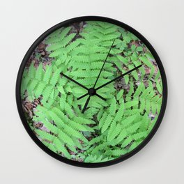 Fern From Above Wall Clock